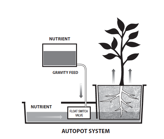 Wick Feed Hydroponic System