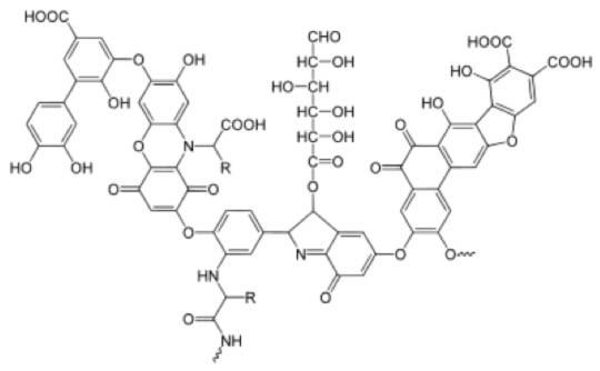 humicacid_molecule
