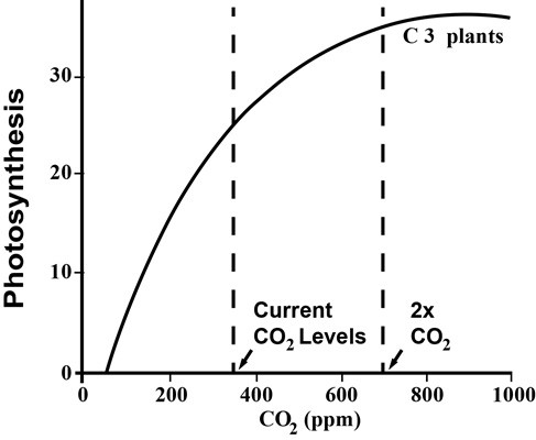 CO2-photosynthesis-graph