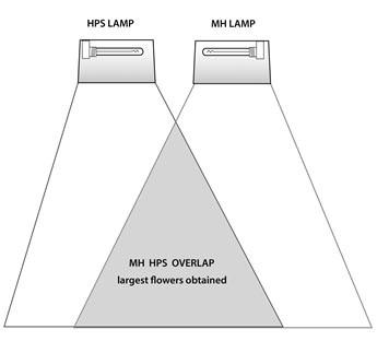 MH-HPS-overlap