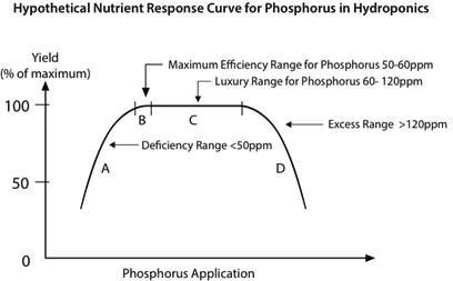 Nute-Hypothetical-P-Curve