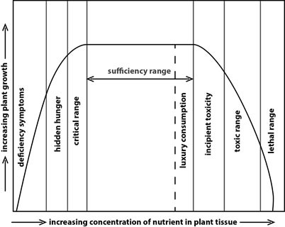 Plant Nutrient Interactions | Hydroponics