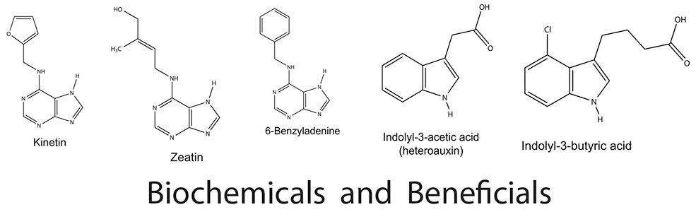 Biochemicals-Beneficials-webopt