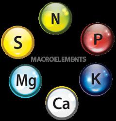 Macro-symbols-round-tran-webopt