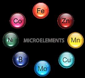 microelements-2-webopt